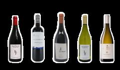 ヨーロッパの代表的な単一ブドウ品種セット